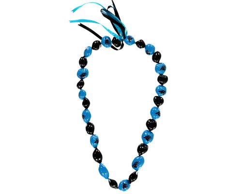 Carolina Panthers Kukui Nut Necklace